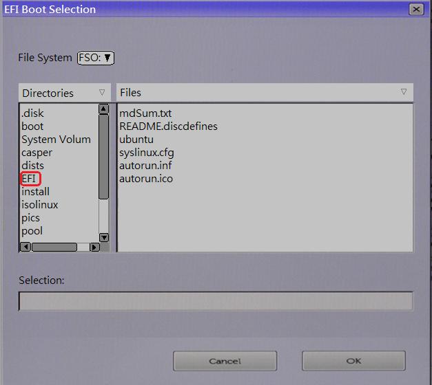 SLN297060_en_US__8ubuntu-EFI — Boot-1