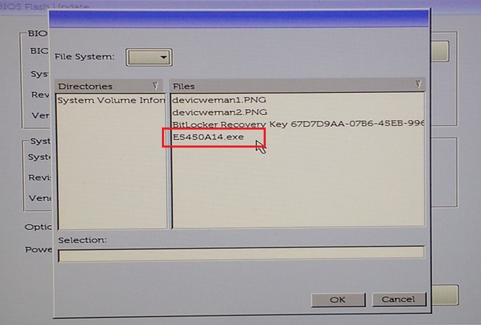 select the bios update file from the usb flash drive