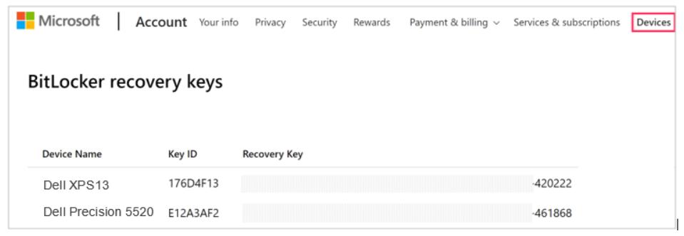 Microsoft Bitlocker Recovery Keys